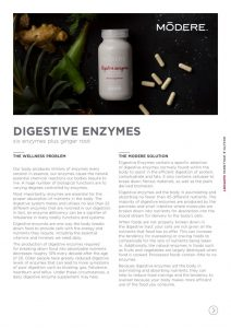 thumbnail of digestive-enzymes-fact-sheet