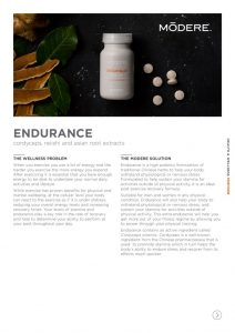 thumbnail of endurance-fact-sheet